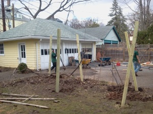 Grape arbor being rebuilt
